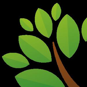 Arbre du logotype